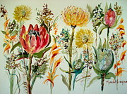Fynbos Prints - Cape Fynbos 2  Print by Marion Langton