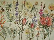 Fynbos Prints - Cape Fynbos September Print by Marion Langton