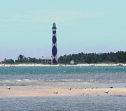 Gull Prints - Cape Lookout and Seagulls Print by Cathy Lindsey