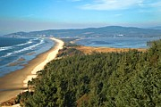 Sandy Beaches Posters - Cape Lookout Coastal View Poster by Adam Jewell