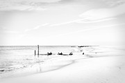 Emily Enz - Cape May Coastline in...