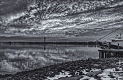 The Nature Center Prints - Cape May Harbor BW Print by Tom Singleton
