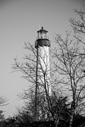 Lighthouse Art - Cape May Light b/w by Jennifer Lyon