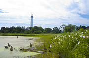 Geese Posters - Cape May Lighthouse - New Jersey Poster by Bill Cannon