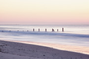 Cape May Ocean Dawn Print by Tom Singleton