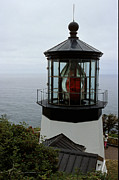 Oil Lamp Photos - Cape Meares Light by Sharon Elliott