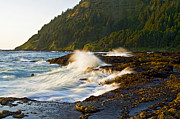 Tees Photos - Cape Perpetua Seascape by Nick  Boren
