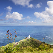 Cape Framed Prints - Cape Reinga Northland New Zealand Framed Print by Colin and Linda McKie