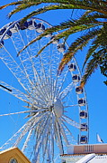 State Fairs Framed Prints - Cape Town Ferris Wheel Framed Print by Aidan Moran