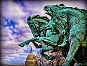 United States Government Originals - Capitol Horse Guard by Boyd Alexander