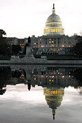 U.s. Capitol Posters - Capitol Reflection Poster by Mitch Cat