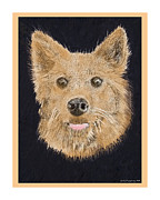 Drawings Of Dogs Framed Prints - Captain Rojo Framed Print by Jack Pumphrey