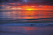 Purple Sea Print Posters - Captiva Sunset III Poster by Steven Ainsworth