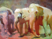 Pachyderm Framed Prints - Captive Audience Framed Print by Kris Parins