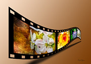 Barry Jones - Floral - Flowers - Capturing Beauty
