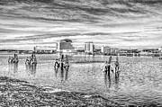 Steve Purnell - Cardiff Bay Towards St Davids Hotel Mono
