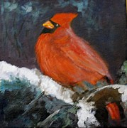 Cardinal In Snow Posters - Cardinal in the snow Poster by Ann Simons