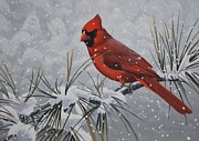 Peter Mathios Posters - Cardinal in the Snow Poster by Peter Mathios