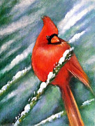 Theresa McFarlane Stites - Cardinal in the Snow