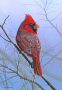 Related Tags: Painting Posters - Cardinal Poster by Mike Brown