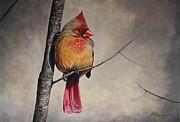 Cardinal Print by Pam Kaur