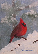 Patrick Paintings - Cardinal by Patrick ODriscoll