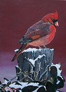Back Yard Paintings - Cardinal Winter Songbird by Sharon Duguay