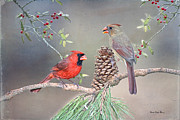 Bonnie Barry - Cardinals in Pine and...
