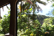 Island Photos - Caribbean Cruise - Dominica - 1212282 by DC Photographer