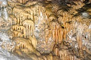 Stalagmite Prints - Carlsbad Caverns 12 Print by T C Brown