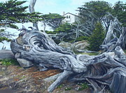 Realistic Landscape Paintings - Carmel Gray by Craig Shillam