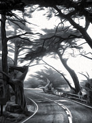 Black And White Photography Paintings - Carmel - Seventeen Mile Drive - 01 by Gregory Dyer