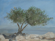 Carob Tree On Mt. Arbel  Print by Rita Adams
