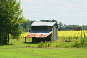 Agriculture Digital Art Originals - Carolina Country Farm by Todd L Thomas