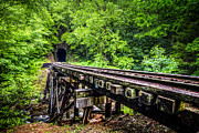 Ties Prints - Carolina Railroad Trestle Print by Debra and Dave Vanderlaan