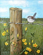 Barbed Wire Paintings - Carolina Wren by Yvonne Knight