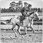 Morning Race Prints - Carousel Horse 2 Print by Richard Marquardt