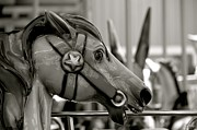 Alex King - Carousel horse...