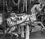 Carrousels Prints - CAROUSEL HORSE in BLACK AND WHITE 2 Print by Rob Hans