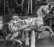 Carrousels Prints - CAROUSEL HORSE in BLACK AND WHITE Print by Rob Hans