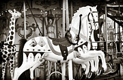 Horse Images Framed Prints - Carousel in Paris Framed Print by John Rizzuto