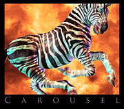 Signed Metal Prints - Carousel Zebra Metal Print by East Coast Barrier Islands Betsy A Cutler