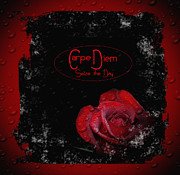 Eva Thomas - Carpe Diem Black and Red