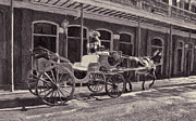 Street Photography Digital Art - Carriage and Mule in French Quarter New Orleans by Kathleen K Parker