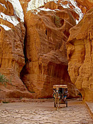Jordan Digital Art Prints - Carriage Returning through Canyon in Petra-Jordan Print by Ruth Hager
