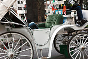 Horse And Buggy Framed Prints - Carriage Ride in Central Park Framed Print by John Rizzuto