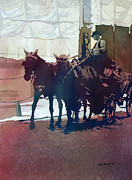Carriage Team Framed Prints - Carriage Trade Framed Print by Kris Parins