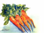 Fruits And Vegetables Framed Prints - Carrots Framed Print by Sandy Linden