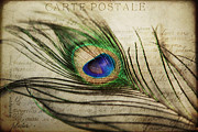 Love Letter Prints - Carte Postale Print by Kelly Simpson