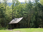Gatlinburg Prints - Carter Shield Cabin in Cades Cove Print by Roger Potts